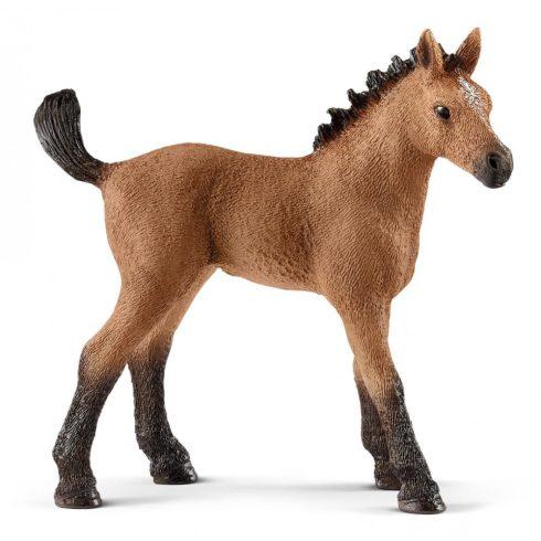 Schleich 13854 Quarter horse csikó
